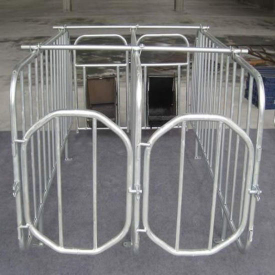 Galvanized Steel Enclosure for Pig Breeding